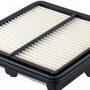 FRAM CA11256 Replacement Air Filter